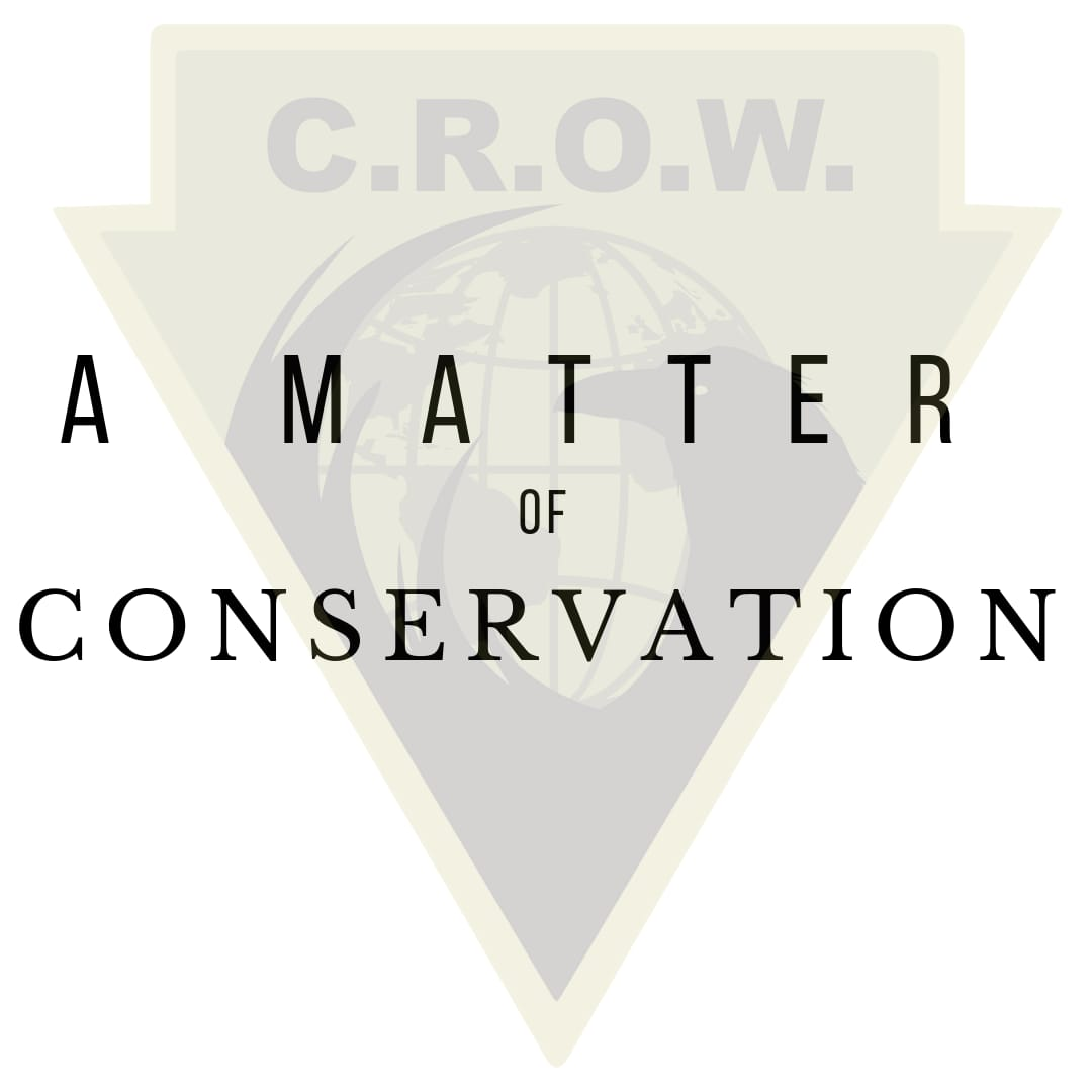 a matter of conservation