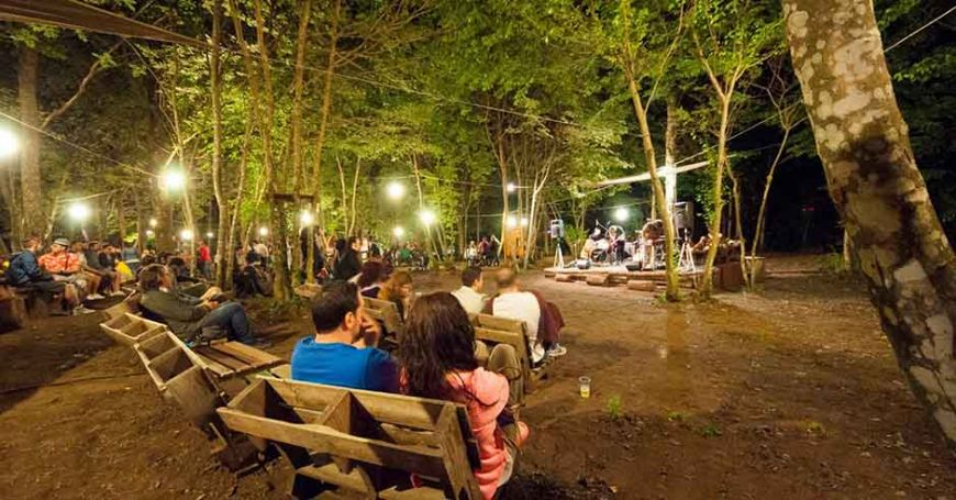 in the grove concerti calendario